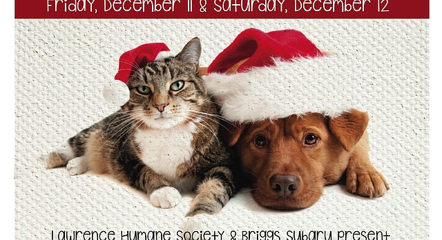 "The Lawrence Humane Society is bringing adoptable dogs to Briggs Subaru this Friday and Saturday for its ""Whisker Wonderland"" event."