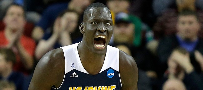 UC Irvine's Mamadou Ndiaye, reacts to a play against Louisville in the NCAA tournament last March. The 7-6 Ndiaye will lead the Anteaters into Allen Fieldhouse Tuesday to face Kansas University.