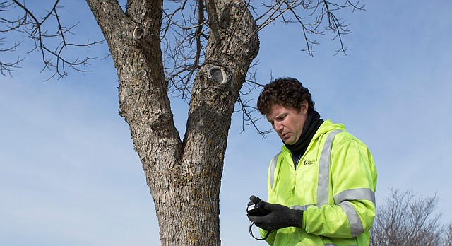 Lawrence city forester Mike Perryman uses a Trimble, a hand-held mapping device, to inventory ash trees in the city's right-of-way Friday at Prairie Park. The Lawrence Parks and Recreation Department will be treating, removing and replacing ash trees over the next eight years as the city combats the emerald ash borer infestation.