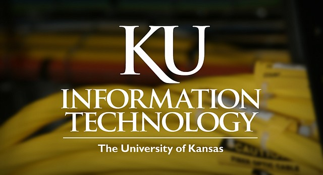 Fiber optic cables from Kansas University's information technology system.