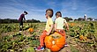 Twin brothers Landon, left, and Jackson Garrett, 2, lay claim to a large pumpkin as their mother, Ally Garrett, points them to another one during a tour Oct. 17 of Schaake Pumpkin Patch, 1791 North 1500 Road.
