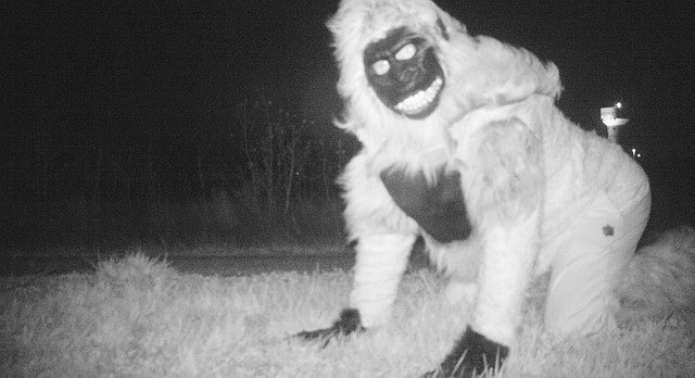 This Nov. 22, 2016 photo provided by the Gardner Police Department shows a person dressed in a gorilla costume that was captured on one of the two motion-activated cameras intended to investigate reports of mountain lions at a park in Gardner, Kan. Police discovered images of smaller animals as well as pranksters dressed as animals, monsters and Santa Claus, but no mountain lions were detected. (Gardner Police Department via AP)