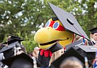 Big Jay looked the part during graduation on Sunday, May 15, 2016 in Memorial Stadium.
