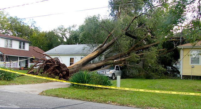 A tree at 212 North Fourth uprooted during Saturday's storm crushed a pickup and damaged a neighboring house. The National Weather Service in Topeka said winds that may have been as strong as 70 mph caused the extensive damage in North Lawrence.