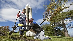 University of Kansas senior Robert Adams, Peachtree City, Georgia, tosses a couple handfuls of dirt from a hole as he and junior Alex Collier, St. Louis, level it before planting a crabapple tree on Friday, Oct. 27, 2017 next to the Campanile on the campus of the University of Kansas. These two and several others worked to plant a total of 24 trees at the top of the hill just off of Memorial Drive.