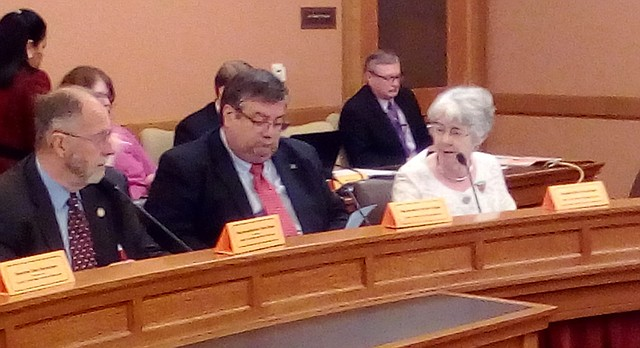 Rep. Tom Sloan, left, chairman of the Special Committee on Natural Resources, and Rep. Ken Rahjes, R-Agra, listen while Sen. Marci Francisco, D-Lawrence, argues that farm irrigators should have to pay into the state water plan fund, just as other kinds of water users do.