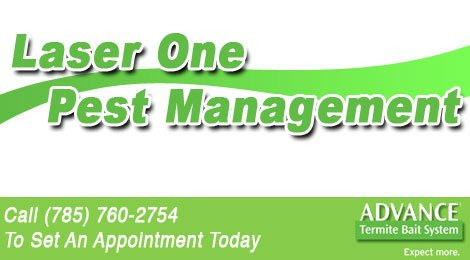 Laser One Pest Management
