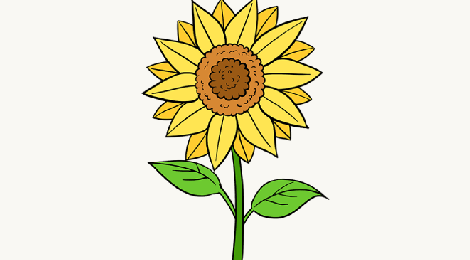 how-to-draw-a-sunflower_tutorial-header