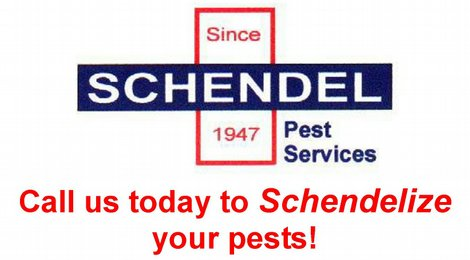 Schendel Pest Services