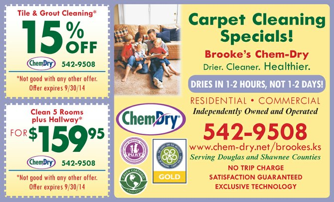 Chem dry richmond coupons