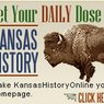 2003-20xx Kansas History Online (KHO)