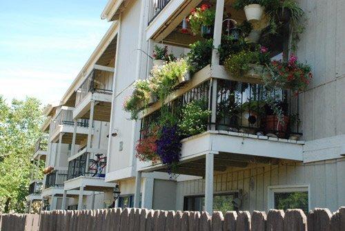 Decks And Patios Quail Creek Apartments 1 2 3 Bedroom Studio Apartments Lawrence Ks