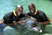 American 400-meter runners and twin brothers Alvin, left, and Calvin Harrison of Salinas, Calif., swim with dolphins at Sea World in Australia.