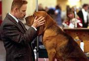 """Christopher Guest pampers his prize-winning bloodhound in the fake documentary """"Best In Show."""""""