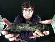 This piece of debris, found recently in a Rooks County farm field, is a piece of space junk from a Russian rocket. Holding the space junk is Doug Wereb, a former space science educator at the Kansas Cosmosphere & Space Center in Hutchinson, who said the debris is part of the fourth stage of a Russian proton rocket that was launched Friday, Oct. 13 from Kazakstan.