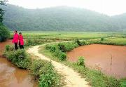 Two girls from a Black Tai village make their way along a path through a group of rice paddies north of Dien Bien Phu.