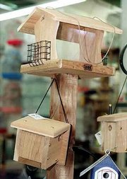 Bird feeders come in a variety of styles. Platforms welcome ground feeders such as doves and sparrows.