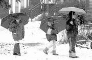 Winters may be getting more frigid, but Timmia Heard Feldman, 11, her sister Zoey, 7, and Cypress Frankenfeld, 9, didn't mind. The three romped through the snow with umbrellas in tow on a snowy day in January.