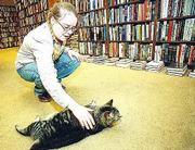 "Shannon Baxter, bookseller, pets ""Alice,"" the Dusty Bookshelf&squot;s house cat. Baxter said although large chain bookstores in Lawrence have effected business, she doesn&squot;t feel too threatened by their presence."