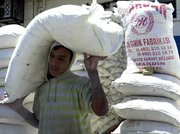 A young Iraqi porter carries a sack of wheat at a market in Baghdad, Iraq. The U.N. Security Council on Tuesday approved an extension of an oil-for-food deal for Iraq.