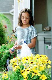 Dianna Torgerson, 10, waters her mother's Indian Summer Black Eyed Susans. Rural Water District No. 5 on Thursday asked residents to curtail outside water use to help fight a water supply crisis.