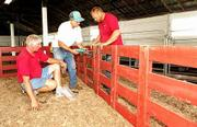 Douglas County maintenance workers, from left, Doug Miller, Harold Barnes, and Jim Rousselo, work on setting up pens for the swine show. The show is one of several events featured at the Douglas County Free Fair, which will run until Aug. 4 at the Douglas County 4-H Fairgrounds.