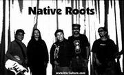 "Native Roots is preparing to release a new CD of diverse reggae music, ""Rain Us Love."""