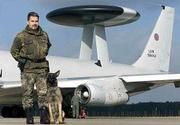 German security employee Manfred Weber stands with his dog, Rockie, in front of an AWACS airplane at the NATO airbase near the western German city of Geilenkirchen. The plane was being prepared for departure to the United States, where the AWACS will be deployed to free up other planes for support operations against terrorism.