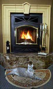 Ashes the cat enjoys the warmth of a wood-burning fireplace by Bis.