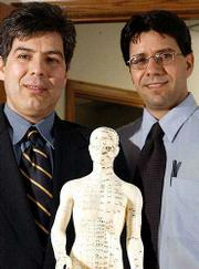 Brothers Mehdi Khosh, left, and Farhang Khosh are naturopathic doctors whose treatments include homeopathy, herbal medicine and acupuncture. The Khoshes are shown Friday with a model for Chinese acupuncture points.