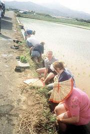 Students with the 1999 Lawrence delegation wash off after trying their hand at planting rice.