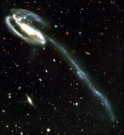 """This picture of the """"Tadpole Galaxy"""" was taken April 1 and 9 by the Advanced Camera for Surveys aboard NASA&squot;s Hubble Space Telescope. The Tadpole is about 420 million light years away in the constellation Draco."""