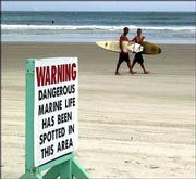 "Surfers give the ""hang loose"" sign as they pass a sign warning them of sharks in the area at New Smyrna Beach, Fla., in this Aug. 31, 2001, file photo. Shark attacks have been increasing in recent years as more vacationers take to the ocean, a panel of shark experts said Tuesday."