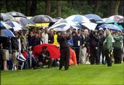 Tiger Woods hits from the short cut of rough along the ninth fairway in front of a sea of umbrellas. Woods carded a 2-under-par 68 during the second round of the U.S. Open on Friday at the Black Course of Bethpage State Park in Farmingdale, N.Y. He is at 5-under heading into today's third round, three strokes ahead of Padraig Harrington.