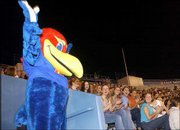 Baby Jay makes his first appearance to incoming freshmen and new students during Traditions Night at Memorial Stadium. New students were welcomed while learning the traditions of Kansas University on Monday.
