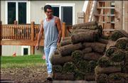 Tony Salah looks over rolls of sod as he sizes up spots for his crew to install a lawn at 1008 Langston Court.