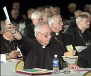 An unidentified bishop holds up a ballot during the voting on the Charter for the Protection of Children and Young People at the U.S. Conference of Catholic Bishops meeting in Dallas, in this June 14 file photo. Three months after U.S. Roman Catholic bishops promised reforms to aggressively discipline priests who molest children, resistance to their policy is intensifying.