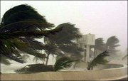 Trees are bent by the wind in Puerto Progreso, Mexico, as Hurricane Isidore approaches the coast of the Yucatan Peninsula. Yucatan state Gov. Patricio Patron ordered all coastal communities evacuated Sunday, bringing to more than 70,000 the number of people forced to flee their homes and head inland.