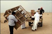Kuwaitis load a truck as they remove belongings from their desert camp close to the Iraq border. The Kuwaiti government has made a quarter of the country out of bounds to the public, a move that some see as foreshadowing of a U.S. attack on Iraq.