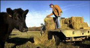 Henry Morgan, 74, feeds hay to his herd of Angus cattle in a pasture near Greeley. After a summer of drought, Kansas farmers are heading into winter with tight supplies of hay.