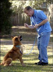 BRIAN KILCOMMONS, RIGHT, works with Roxy, a 1-year-old Chow mix, at the Humane Society of North Pinellas in Clearwater, Fla. Kilcommons developed training techniques designed to make shelter dogs more adoptable.