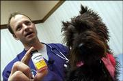 Eudora Animal Hospital veterinarian George Schreiner was called to treat a horse last month that ended up dying from rabies. Schreiner uses rabies vaccinations on companion animals like this Scottish terrier named Captain Bridger, as well as large animals like horses and cattle.