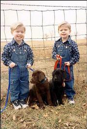 Twin brothers Gad Weston, left, and Zebulun Ky Huseman, 2, hold onto their 2-month-old puppies, Cocoa and Drue. The boys are the sons of Brian and Terri Huseman, Tonganoxie. Terri Huseman submitted the picture.