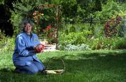 KAREN MCGRATH'S GARDEN at 4704 baltrusol boasts a variety of roses, honeysuckle and hydrandeas. She displays a handful of roses in full bloom that will be on display during the Douglas County Externsion Master Gardener Garden Tour June 7-8.