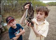 Eight-year-old Michael Moloney checks out a bundle of snakes that he caught with a little help from 6-year-old Reilly Onufreychuk. The boys met last month at Cave No. 3 at Narcisse Snake Pits Wilderness Park in Manitoba.