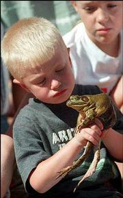 Garrett Noble keeps a firm grip on his great green jumping bullfrog at the Old Settler's Reunion frog jumping contest in Oskaloosa in this 1999 file photo. This year's Old Settler's Reunion starts today and continues with events through Sunday.