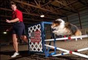 Joan Meyer leads her dog Dustin, a 7-year-old Shetland sheepdog, over a jump at Triune Canine Training Center in rural Lawrence. Meyer and Dustin next month will go to St. Louis for the Purina Dog Chow Incredible Dog Challenge National Finals. Dustin will compete against other dogs in the obstacle-course portion of the event.