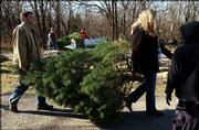 Kyle Huntington, foreground at left, of Mission, and Lori Seaberg, second from right, of Lawrence, carry a Christmas tree their family cut at the Strawberry Hill Christmas Tree Farm, west of Lawrence. Huntington, Seaberg's brother-in-law, and other members of their family have cut their tree at the farm for seven years running.