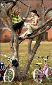With their bicycles parked beneath them, a pair of friends find a quiet spot in a tree in South Park to talk about what they got for Christmas. Conversing are Lidia Strecker, left, and May Connor, both 8, from Lawrence.