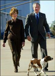 Spot walks with President Bush before departing TSTC Airport in this Nov. 30, 2003, file photo, in Waco, Texas. Spot, a 15-year-old English springer spaniel, died Saturday.